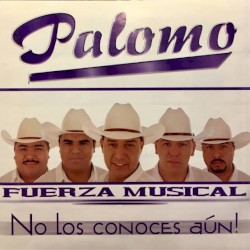 Palomo - Intenté Olvidarte